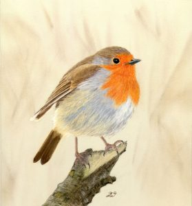 For sale, Robin (Limited edition print)