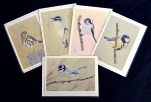 For Sale, Greeting Cards, British Birds set of 5
